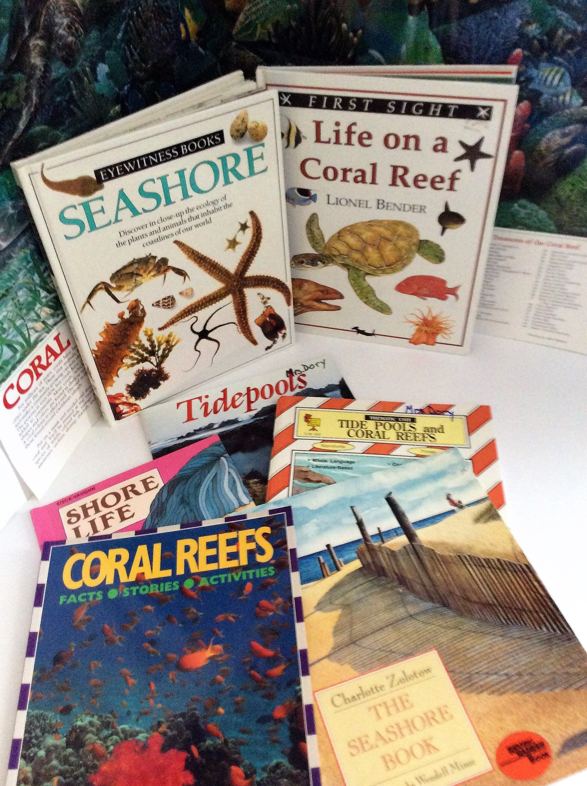 Oceans Tidepools And Coral Reefs