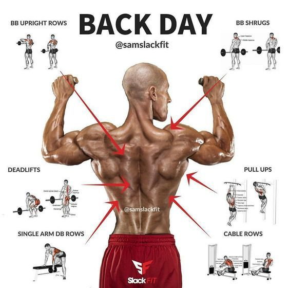 develop your back muscle in a shorter time with these exercises ...