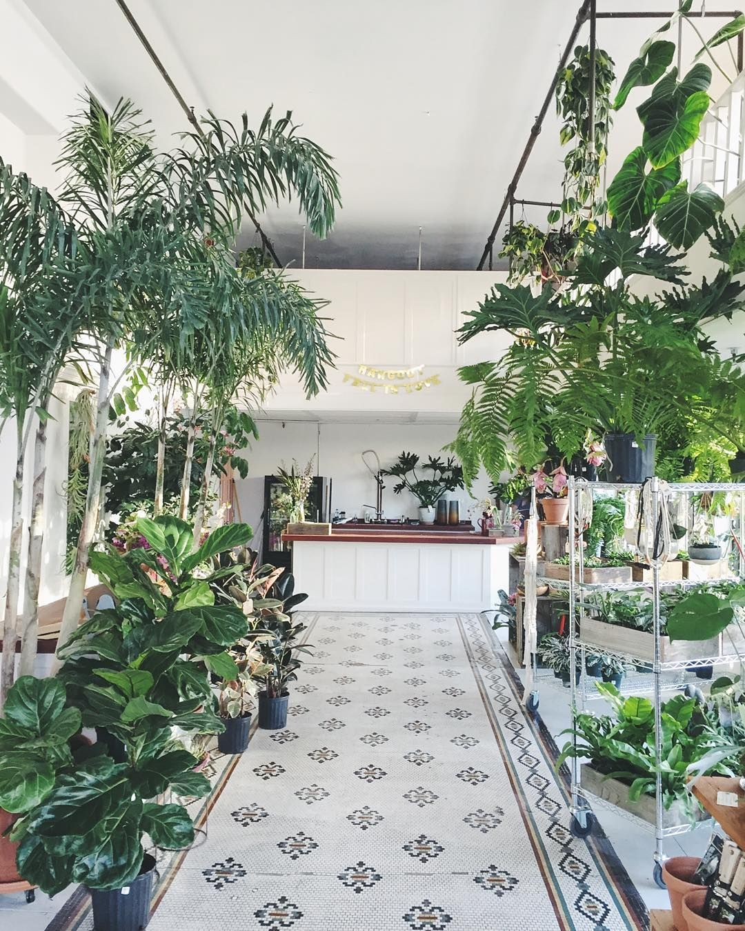 Florist Plant Owner Portland Oregon