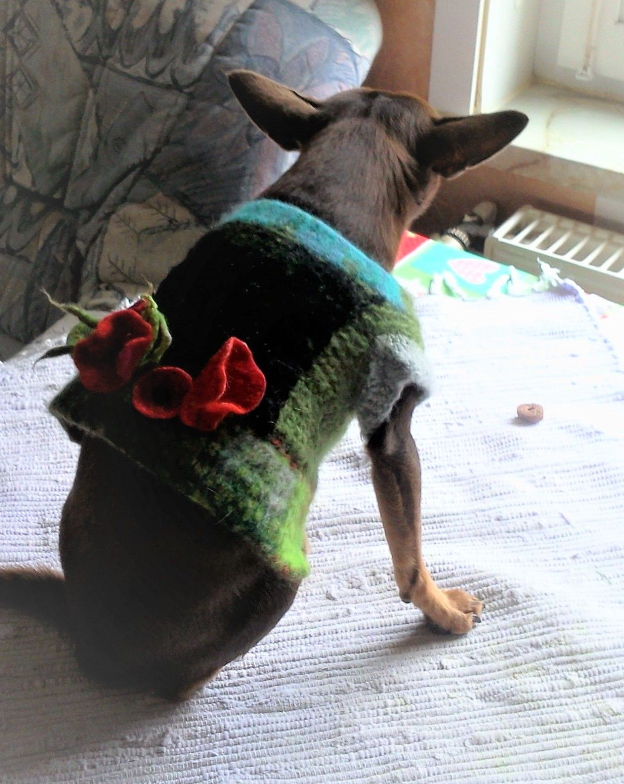 Hundepullover Waldelfe | Filzen und Häkeln