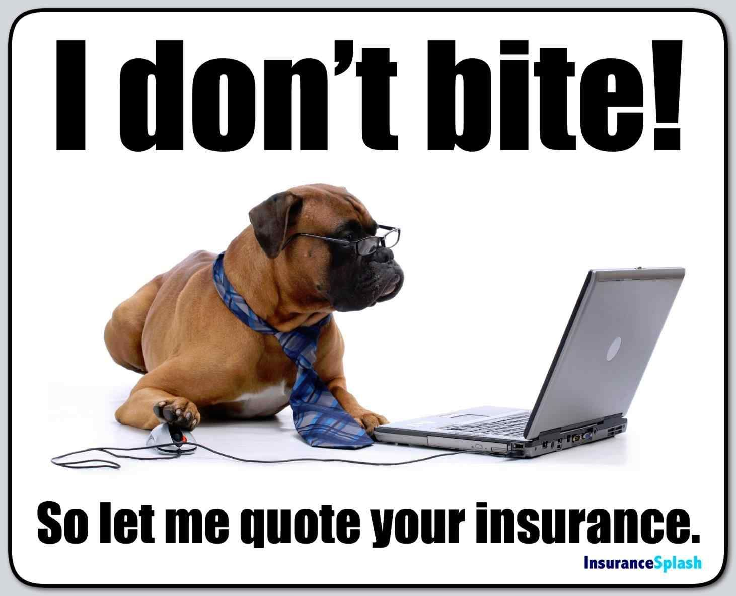 Did You Know That Insurance Companies Provide Quoting Tools
