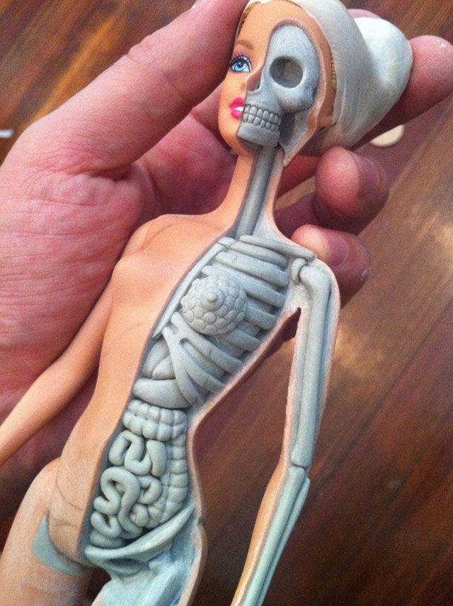 La anatomía de Barbie al descubierto por Jason Freeny3 | Art Addict ...