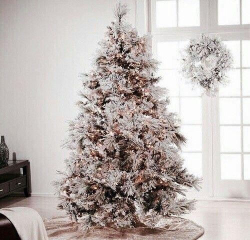 Image de christmas, winter, and christmas tree