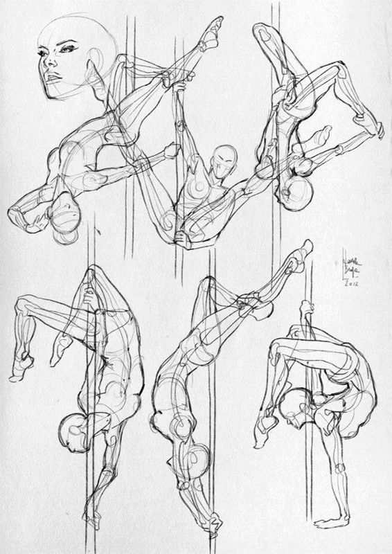 Here are some more anatomical studies and sketches (sport). | tian ...