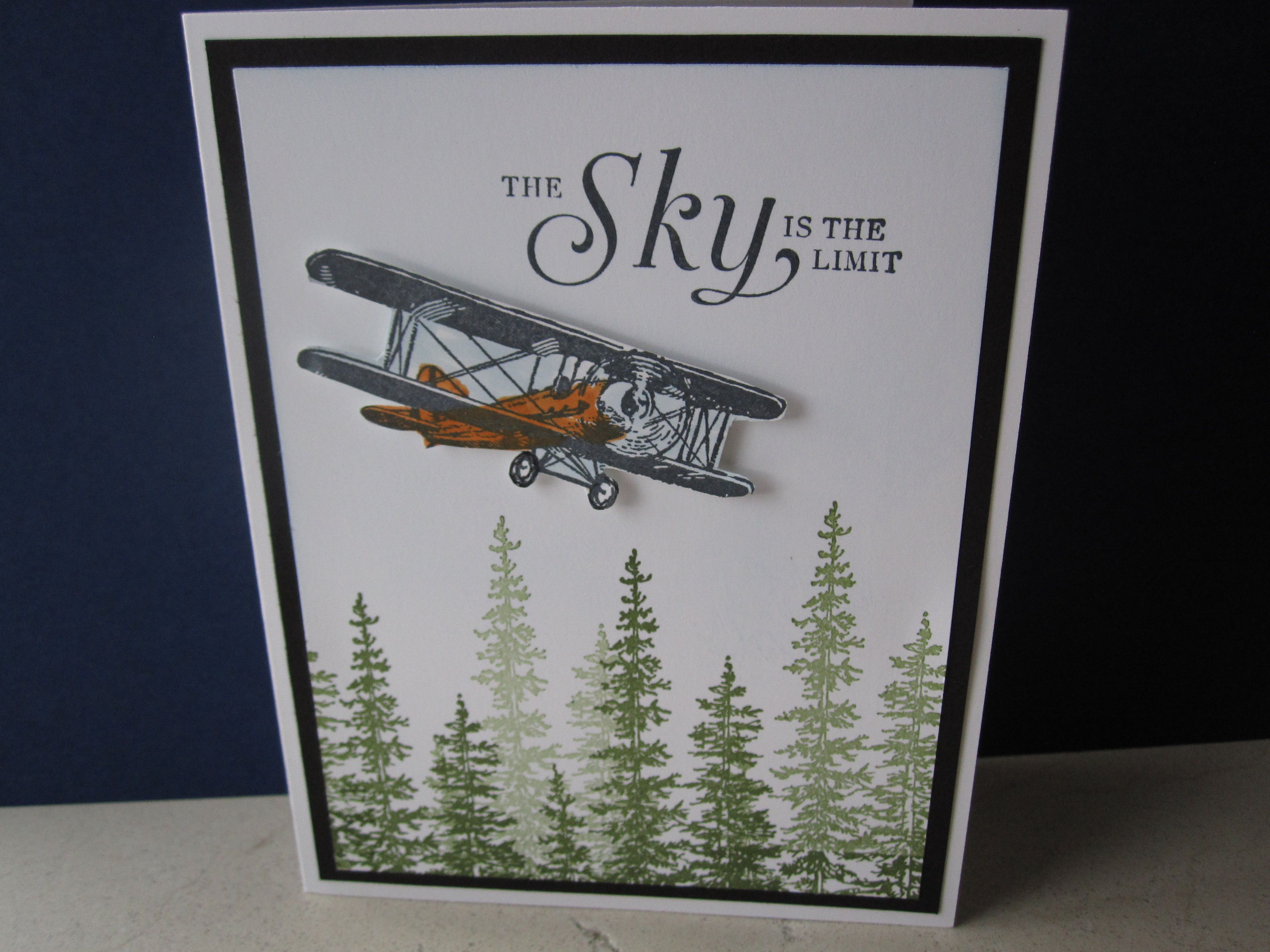 350 Best Sky Is The Limit Images On Pinterest Masculine Cards