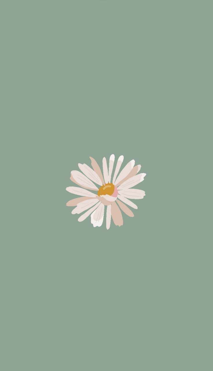 Pin by 𝓦𝓲𝓷𝓽𝓮𝓻 on Flower | Simple iphone wallpaper, Flower iphone wallpaper, Pretty wallpaper iphone