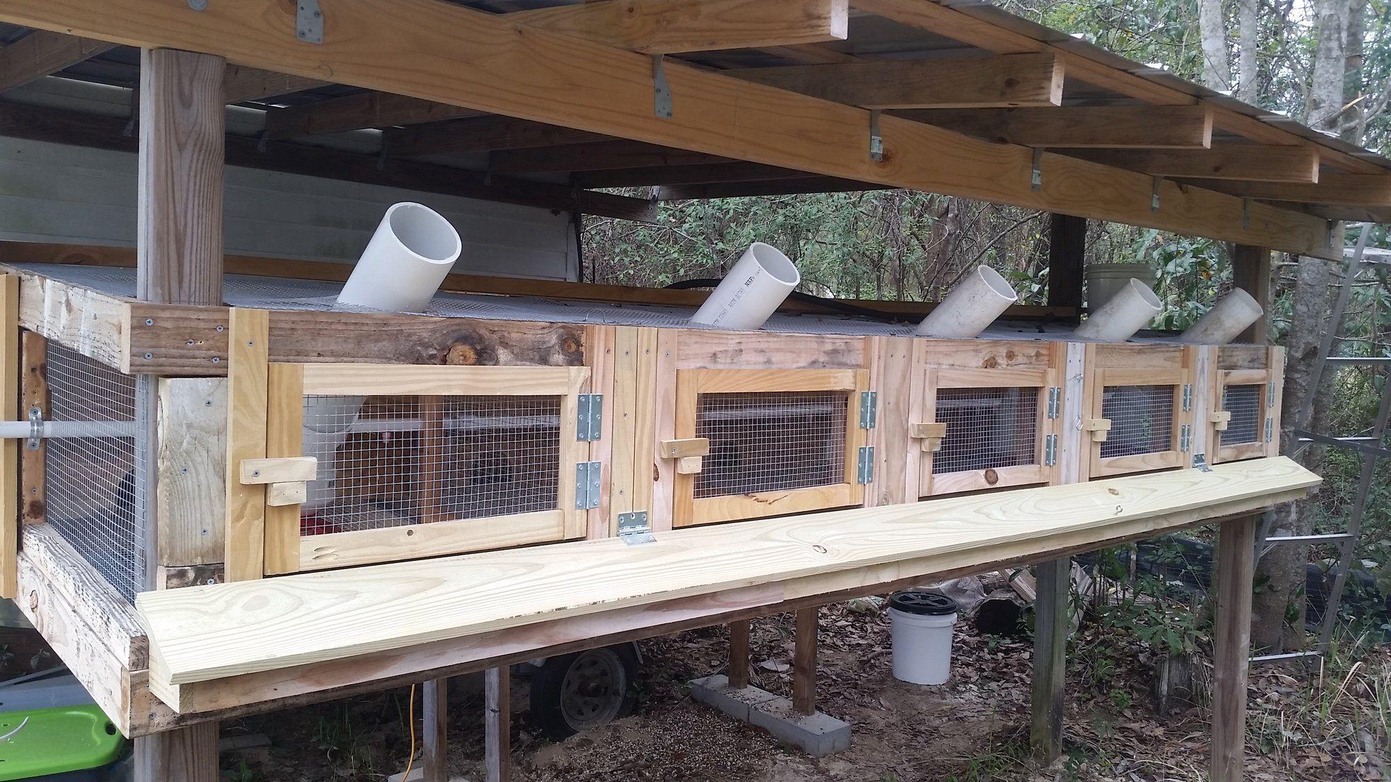 Pin On Urban Homesteading Diy backyard quail coop