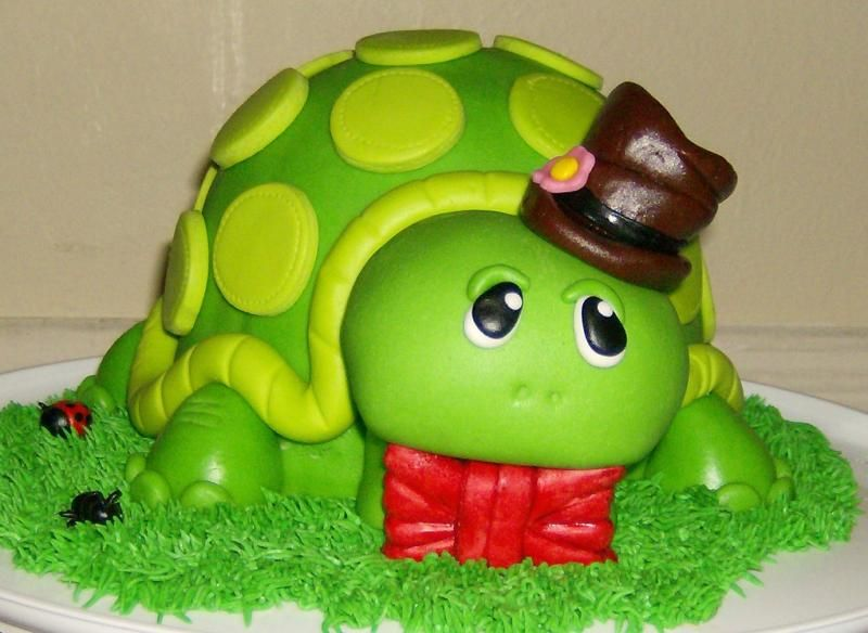Turtle All Dressed Up Turtle done in green fondant over