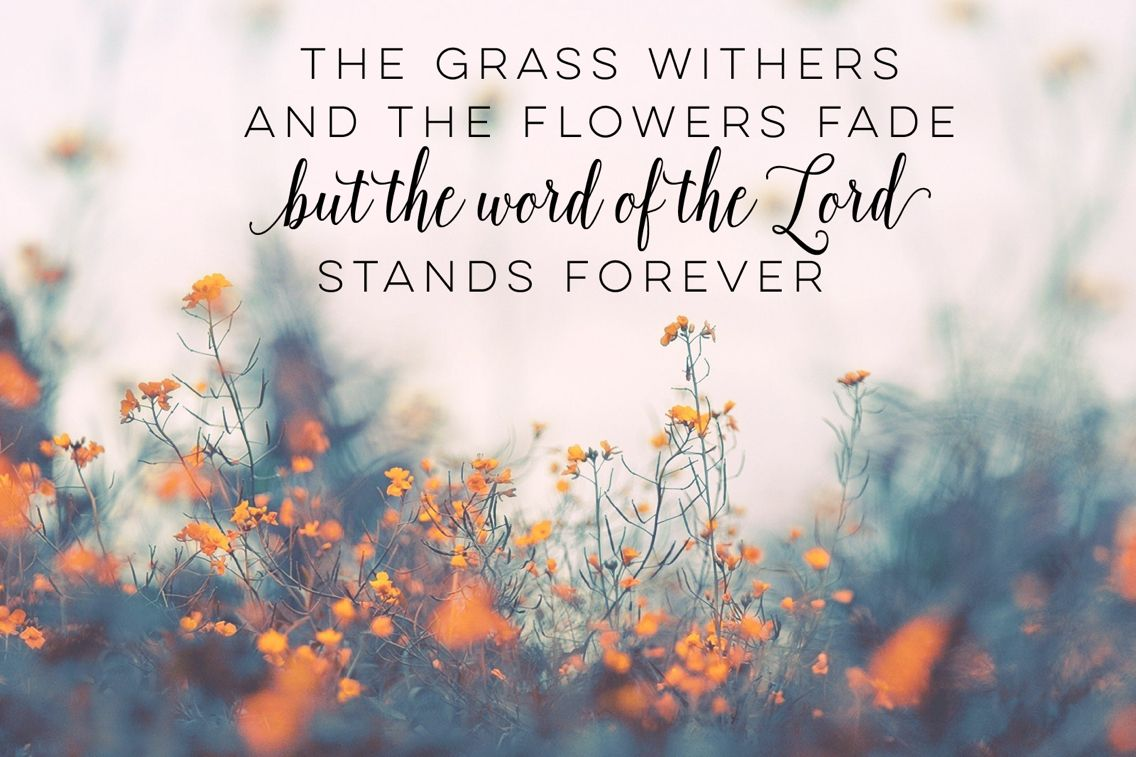 Bible Verse Desktop Wallpaper | Desktop Wallpapers | Bible ...