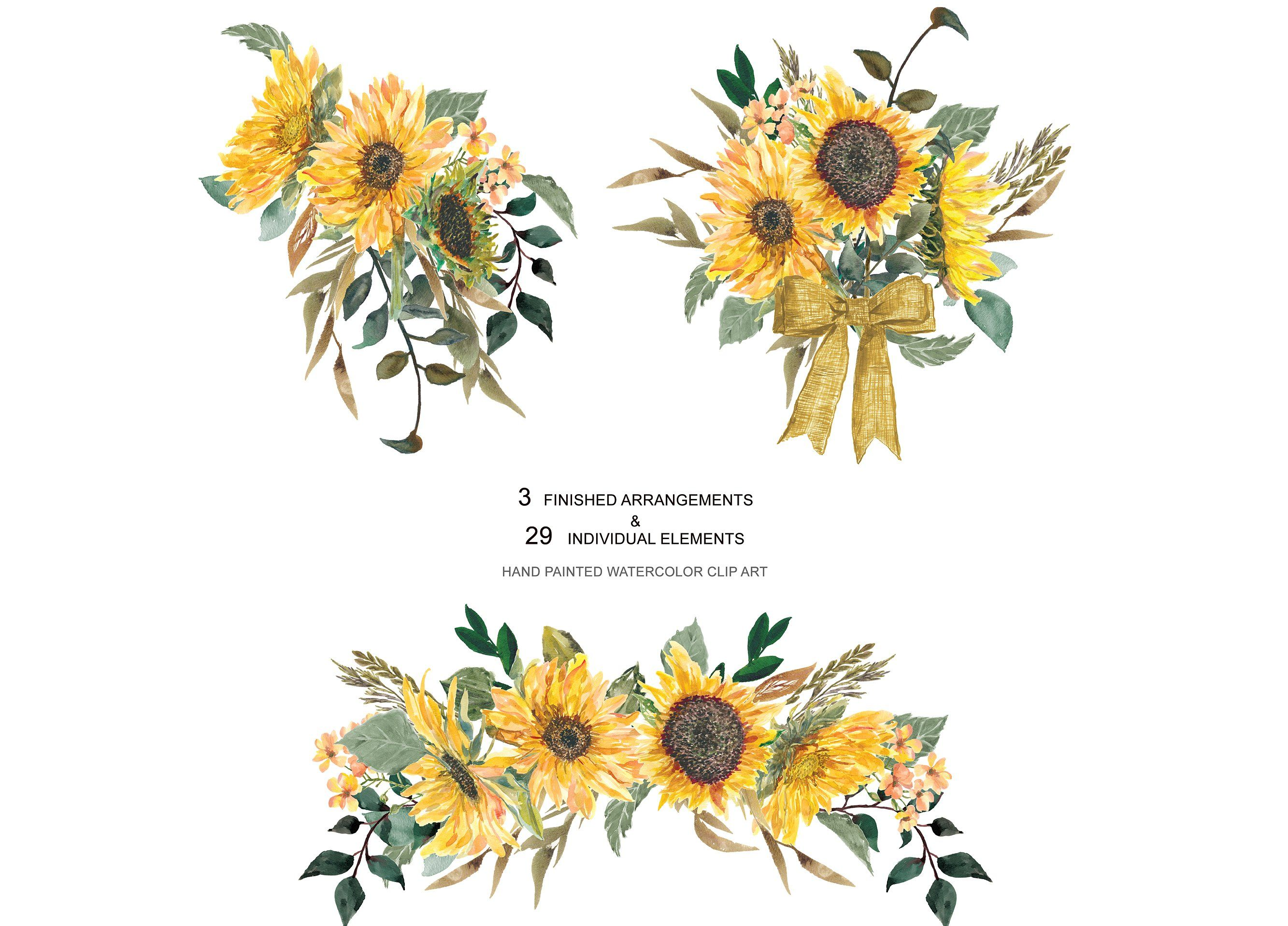 Hand Painted Sunflower Clip Art Clip Art Watercolor Sunflower