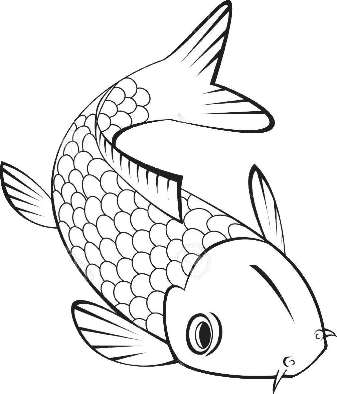 500 Koi Fish Ideas Koi Fish Koi Koi Fish Pond