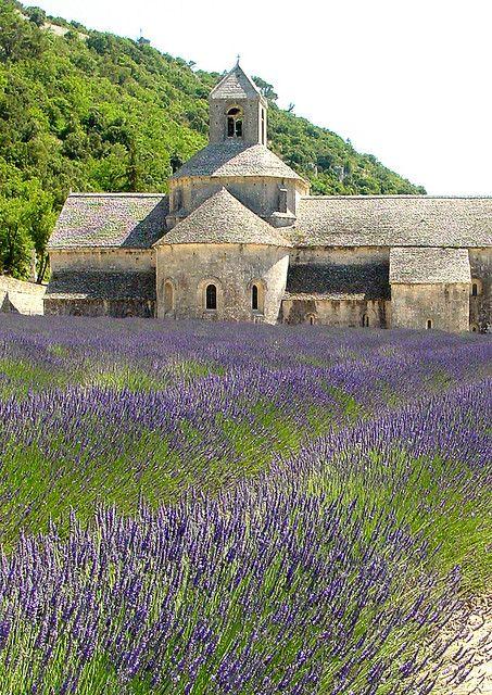 um campo de precisão da arte de Deus :)  Fields of lavender.  Abbaye de Senanque. Luberon, Provence.