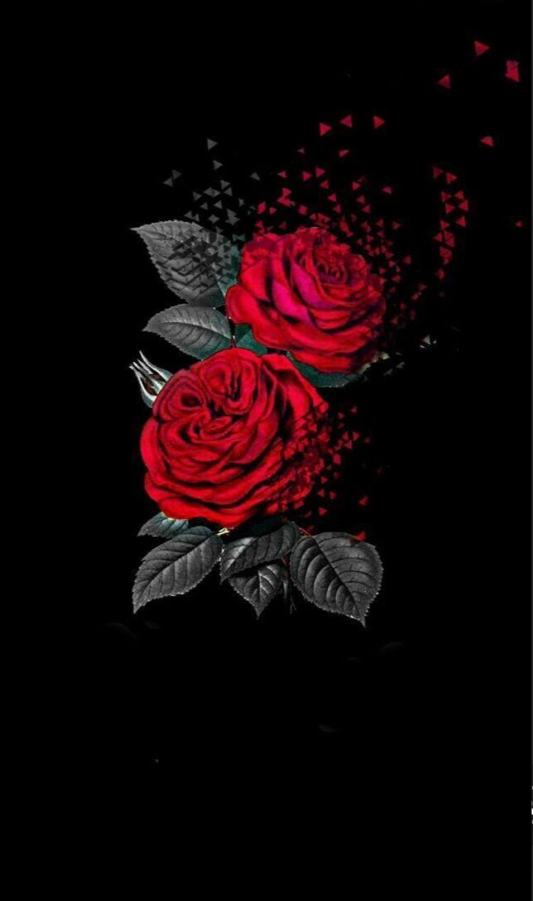 Epingle Par Н™°ðš—𝚒𝚜𝚜𝚊 Sur Fond D Ecran En 2020 Fond D Ecran Rouge Fond D Ecran Iphone Fleur Fond D Ecran Telephone