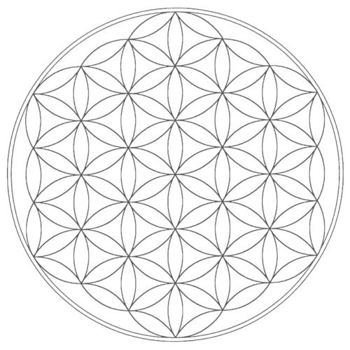 This is the Flower of Life it is a geometrical figure