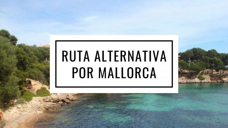 Visitar Palma De Mallorca En Dos Días Caracol Viajero Mallorca Palma De Mallorca Palmas