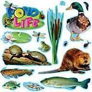Pond Life Mini Bulletin Board Set | TRENDenterprises.com