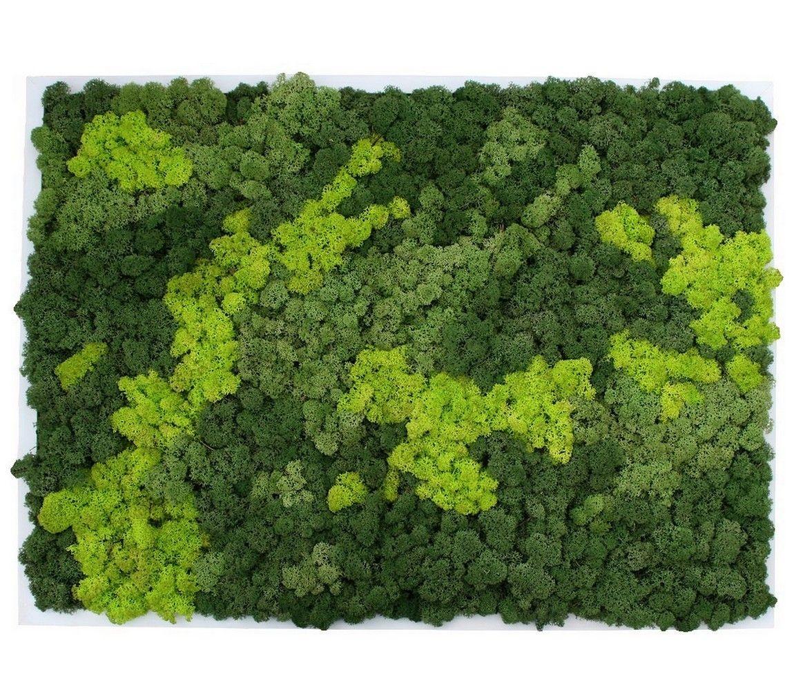 maxi tableau v g tal en lichen stabilis tableau v g tal lichen bois. Black Bedroom Furniture Sets. Home Design Ideas