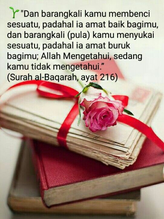 Al Baqarah Ayat 216 : baqarah, Surah, Baqarah
