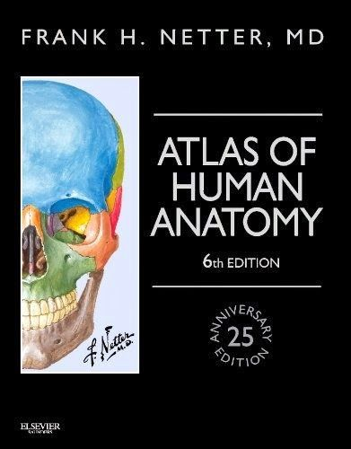 Download the book netters atlas of human anatomy 6th edition pdf download the book netters atlas of human anatomy 6th edition pdf for free preface the 25th anniversary edition of frank h netter mds atlas of human fandeluxe Images