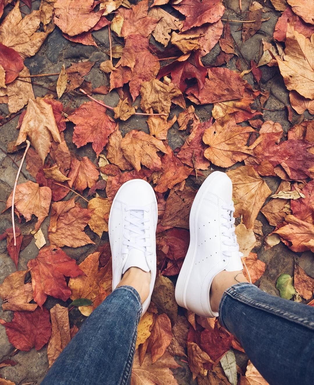 Картинка ноги осенью