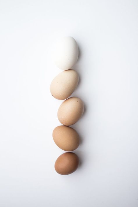 Egg Gradient