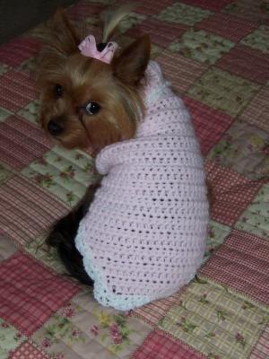 Crochet Female Dog Sweaters Easy Dog Sweater Free Crochet Pattern