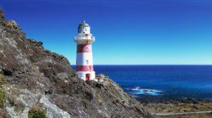 Cape Palliser lighthouse.  Drive the coast road to Cape Palliser, where you can climb a lighthouse, watch a seal colony and enjoy the non-stop views.