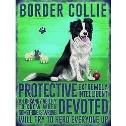 Border Collie Dog Metal Wall Hanging Sign Collie Dog Border Collie Dog Collie