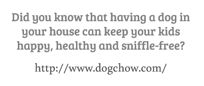 Did you know that having a dog in your house...