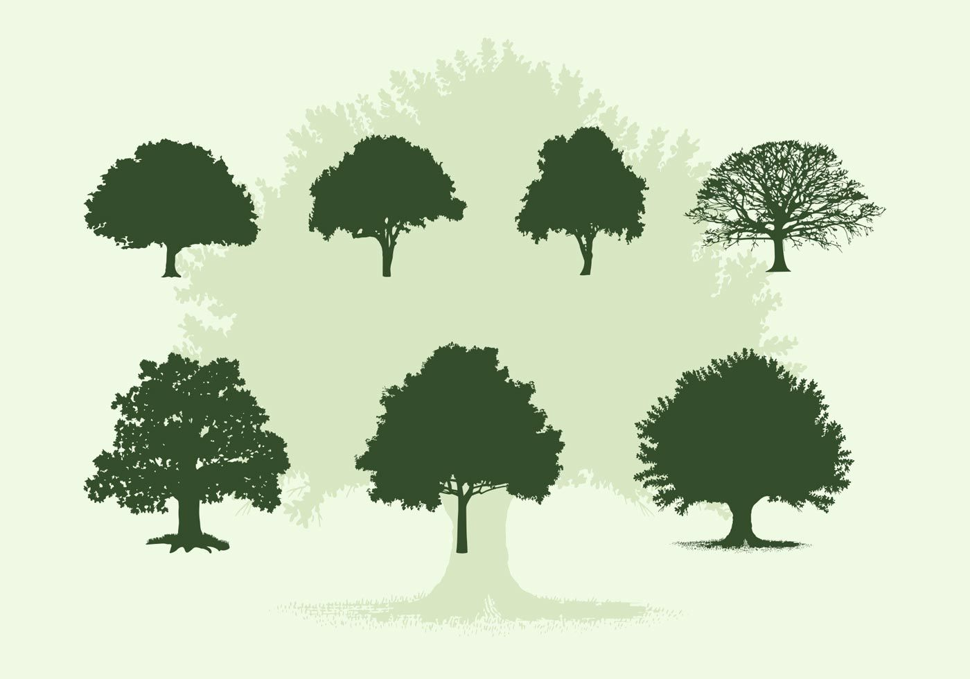 Vector Illustration Tree: Various Oak Trees Vector Silhouettes Free Download