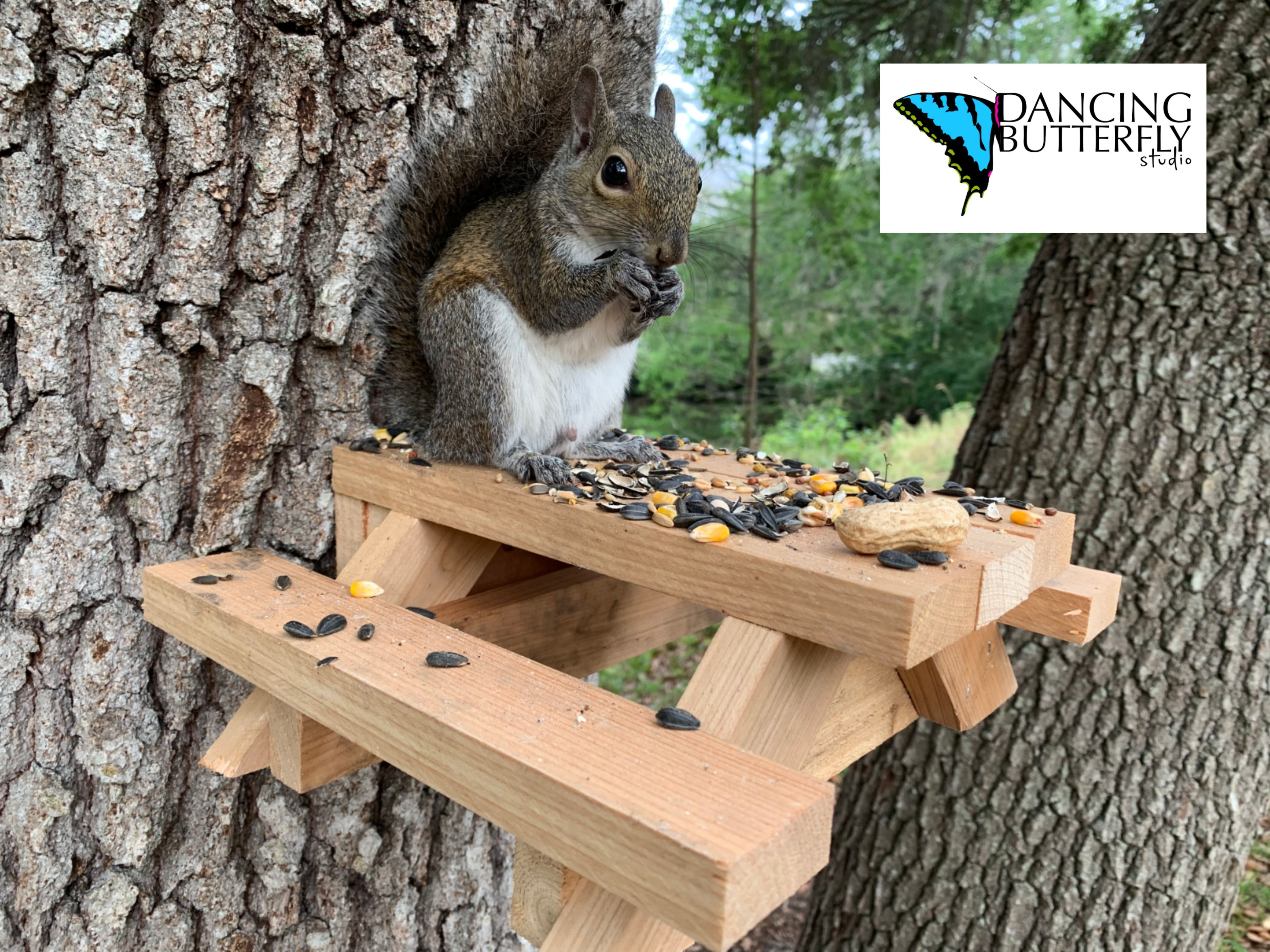Best squirrel picnic table with feeder pail in 2020