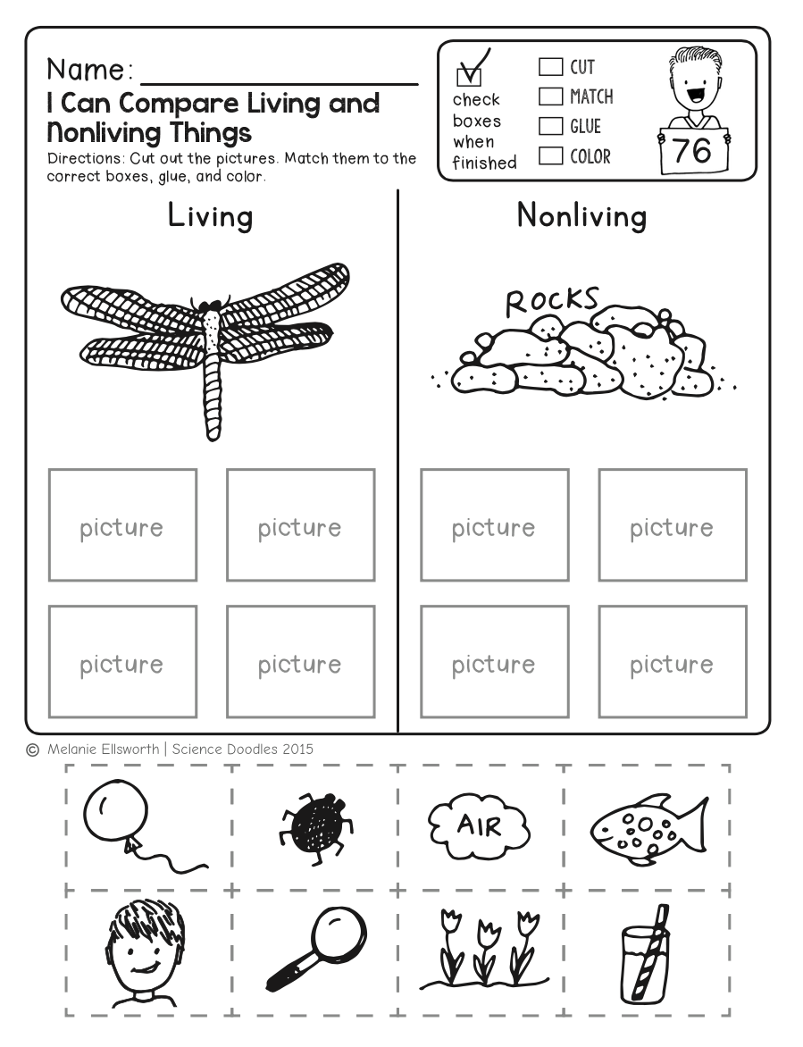 FREE! NO-PREP Kindergarten Science SAMPLER by Science Doodles   Free  science worksheets [ 1172 x 899 Pixel ]