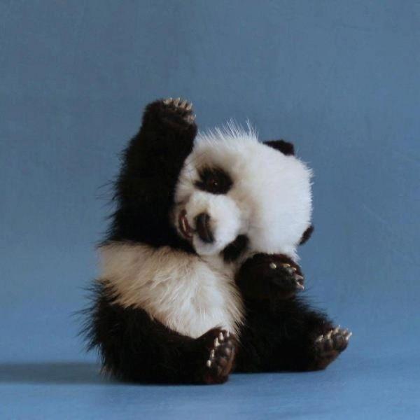 Cute Baby Panda Sculpture By Melisa Nichols Baby Animals Fluffy Animals Cute Animals