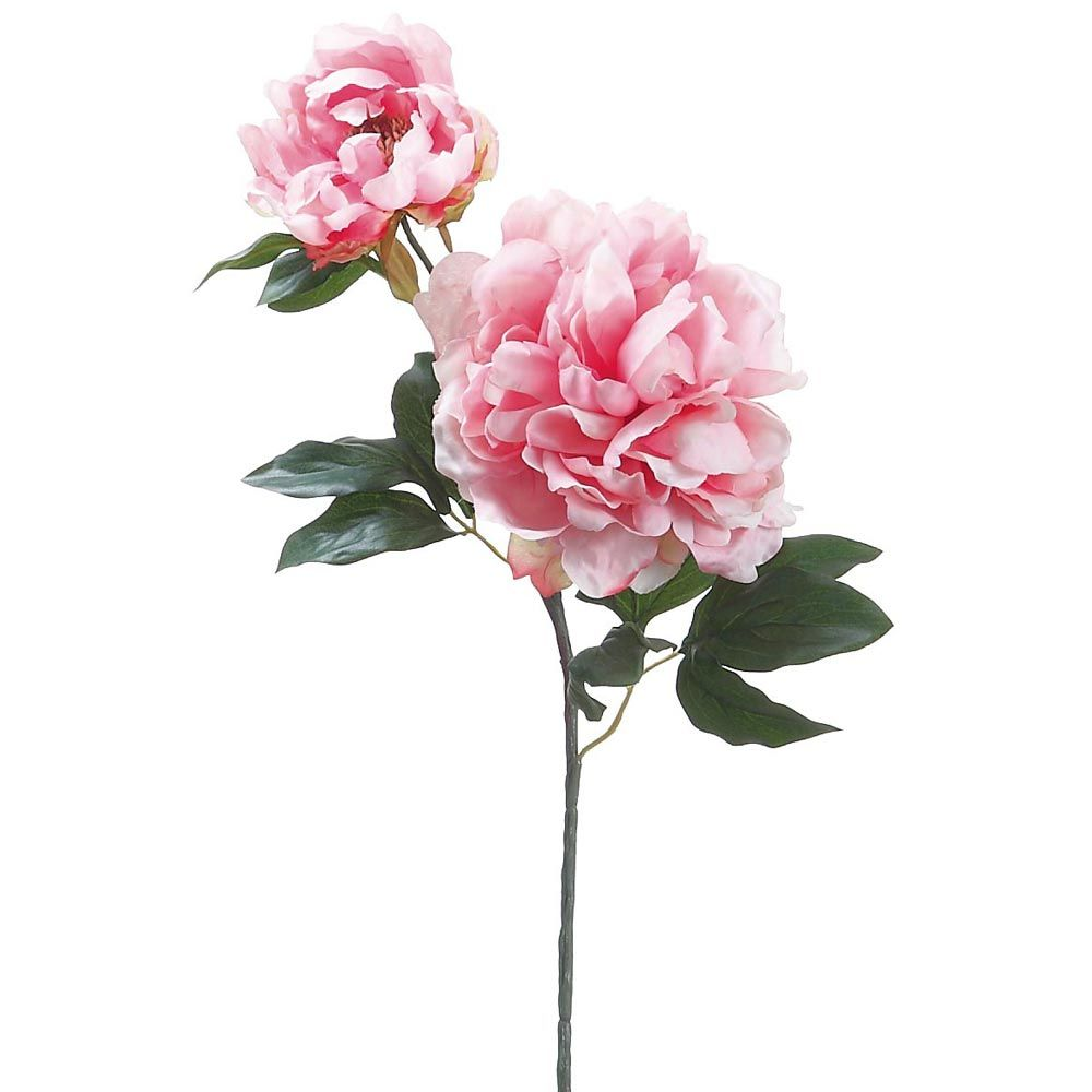 Silk Flower Peony Spray In Cream Pink 195in Tall Wedding Stuff