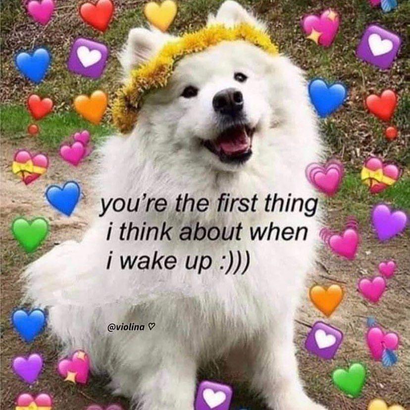 Wholesome On Instagram Goodmorning In 2021 Cute Love Memes Cute Memes Flirty Memes