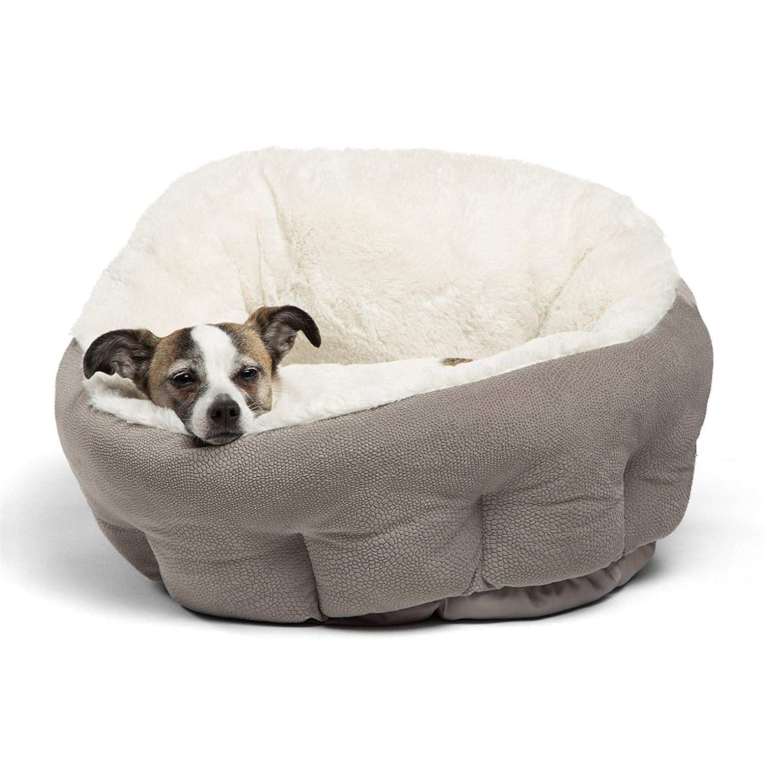 Dogs Bed For Small Dogs Gatos