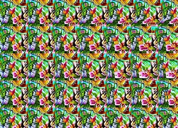 Butterfly Stereogram Magic Eye Pictures Eye Illusions Optical Illusions Art