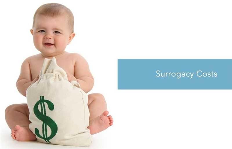 Feskov surrogacy center the prices our center provides