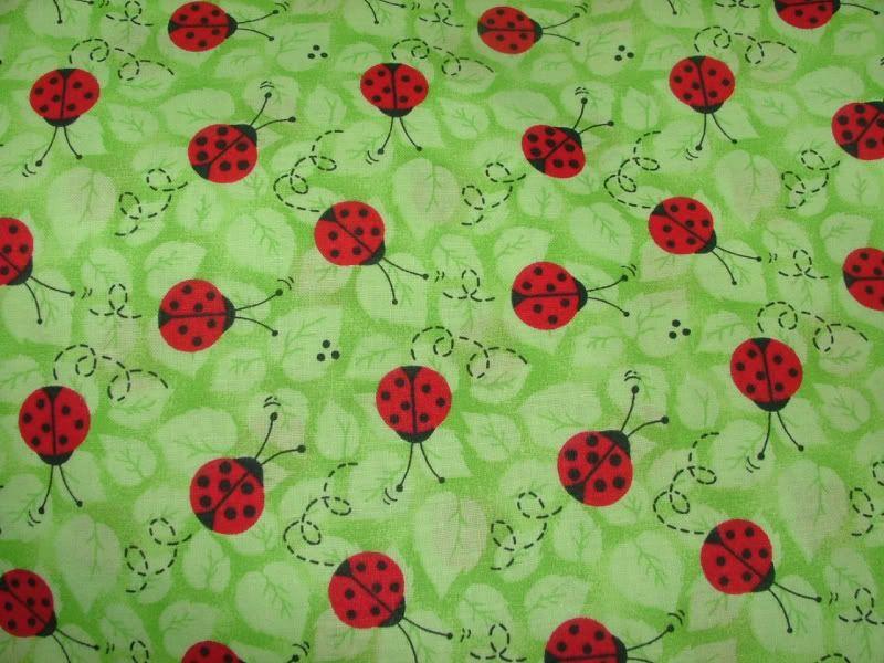 Ladybugs Image
