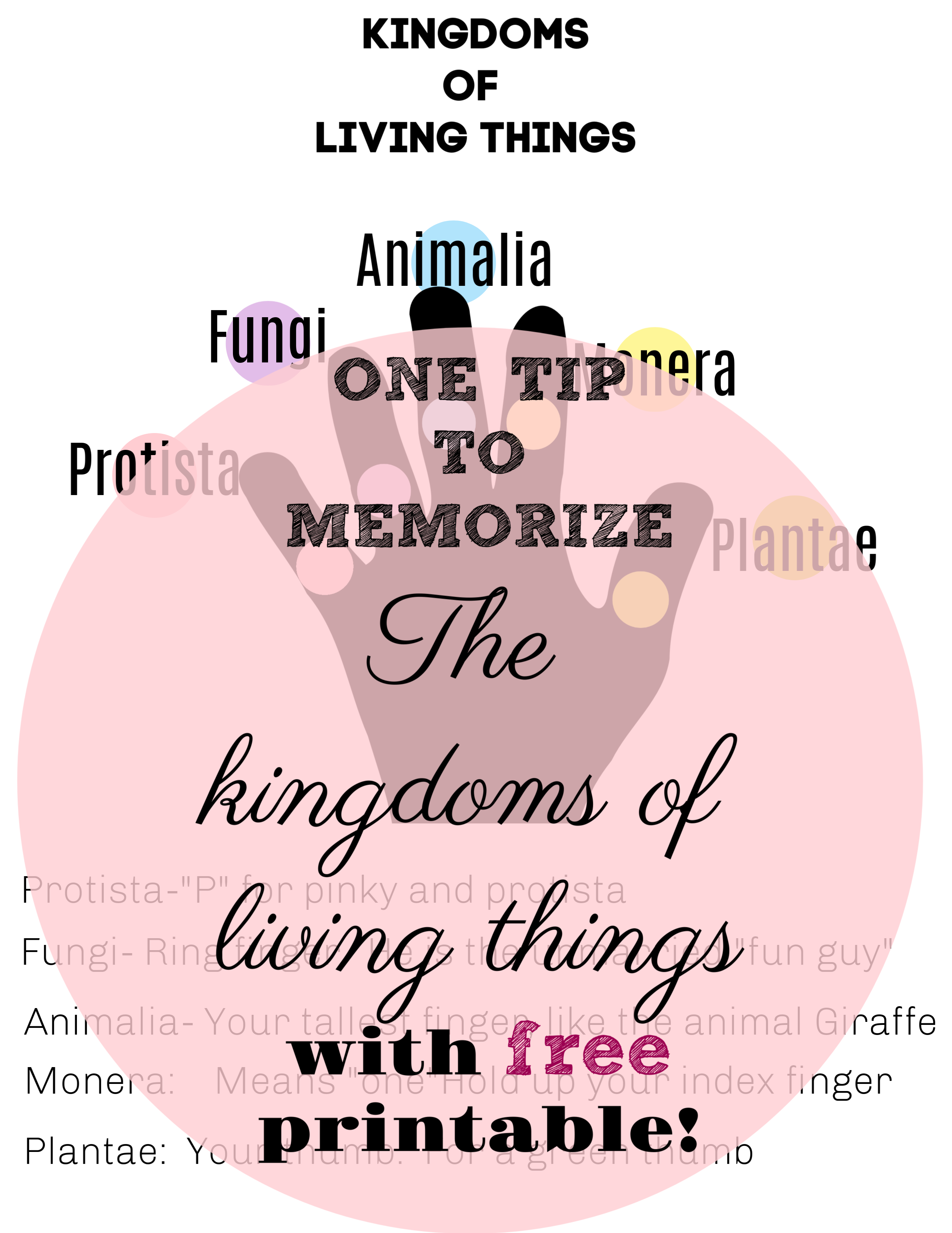Quick Way To Memorize The Kingdoms Of Living Things