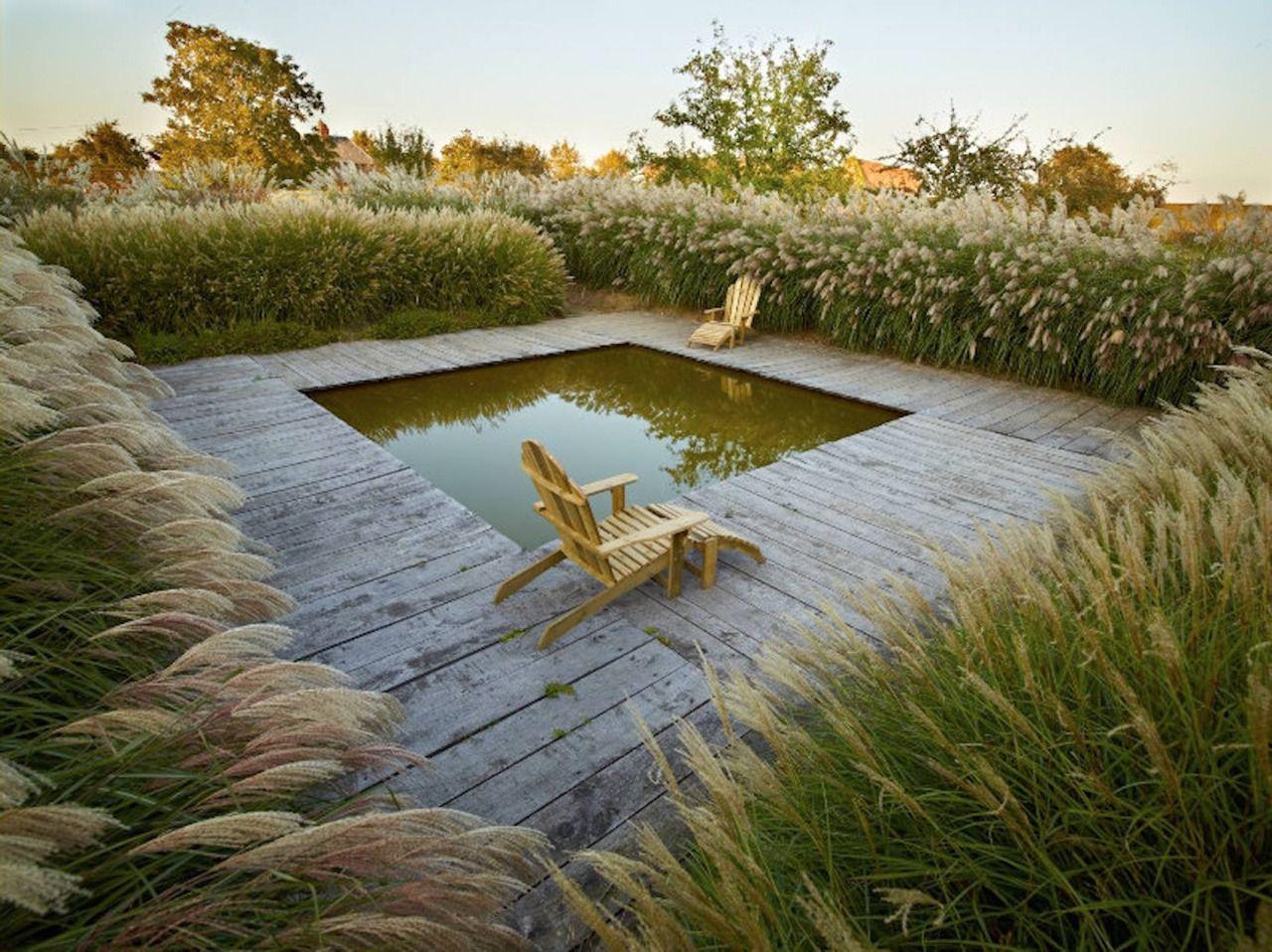 Gartenteich Schwimmteich Gartengestaltung Garten Wasser Holz