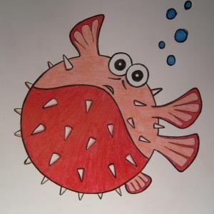 Come Disegnare Un Pesce Palla Disegni Pesce