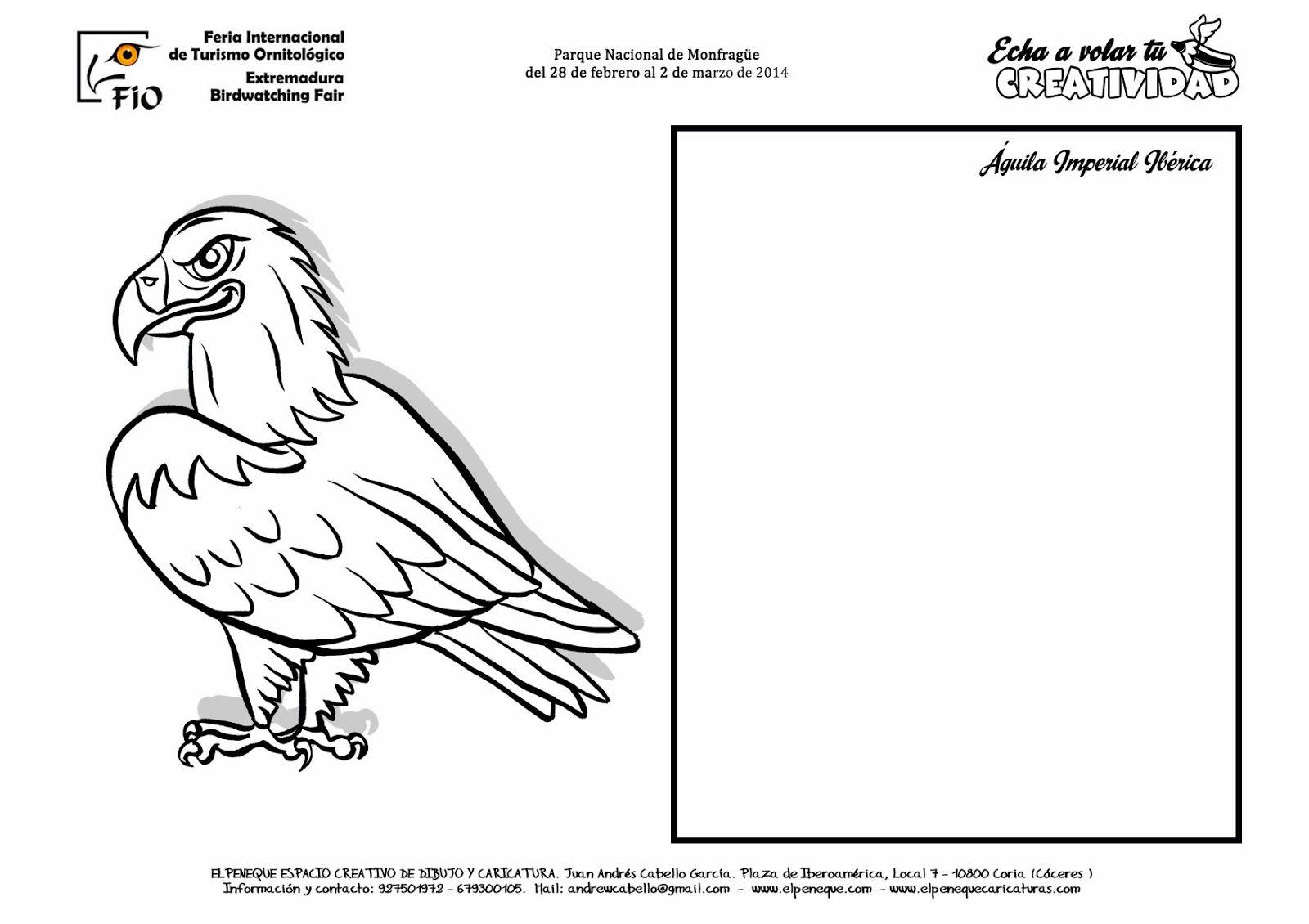 FICHAS DE AVES PARA DIBUJAR Y COLOREAR EN FIO | Águila imperial ...
