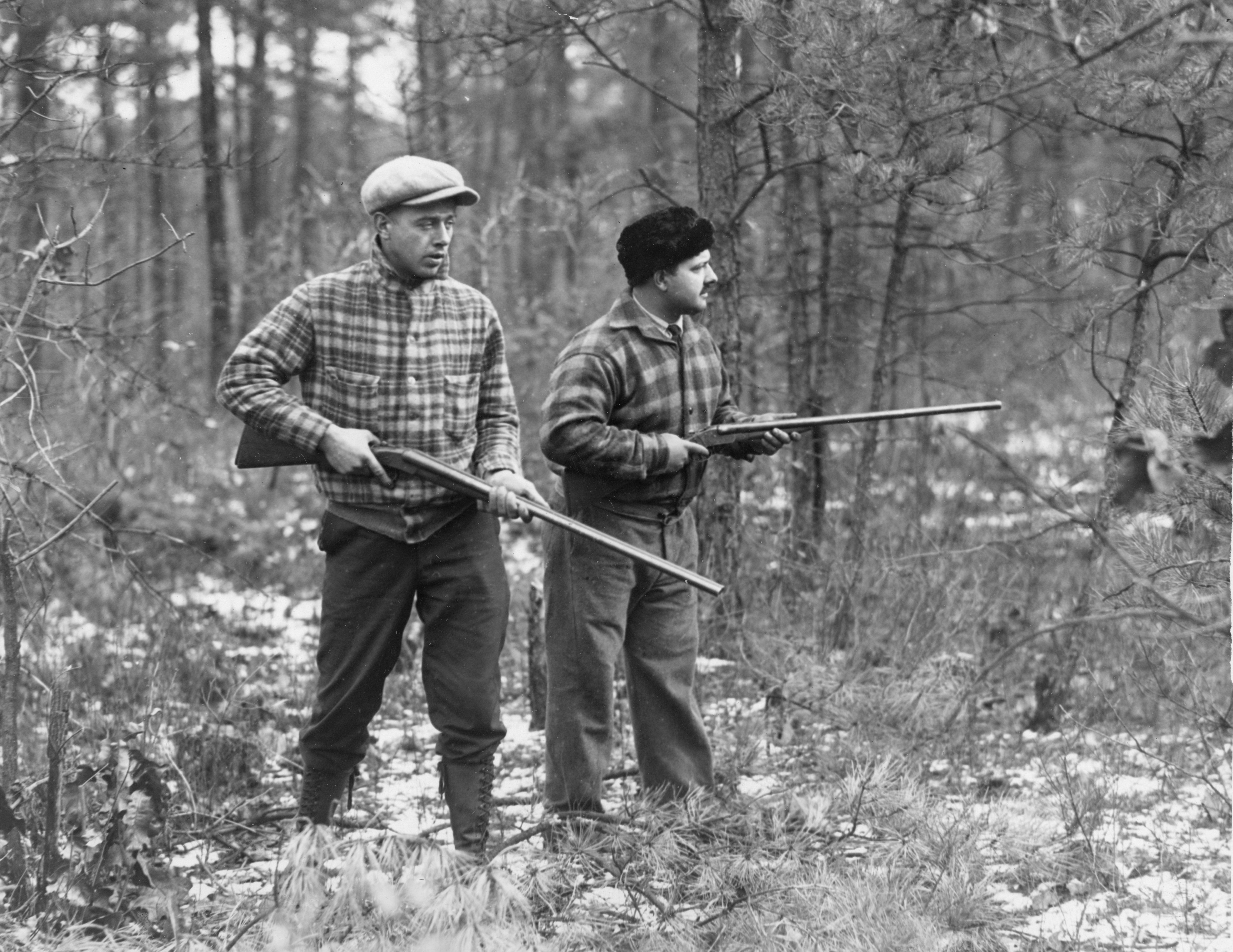 By 1900 NJ's deer population had reached its lowest
