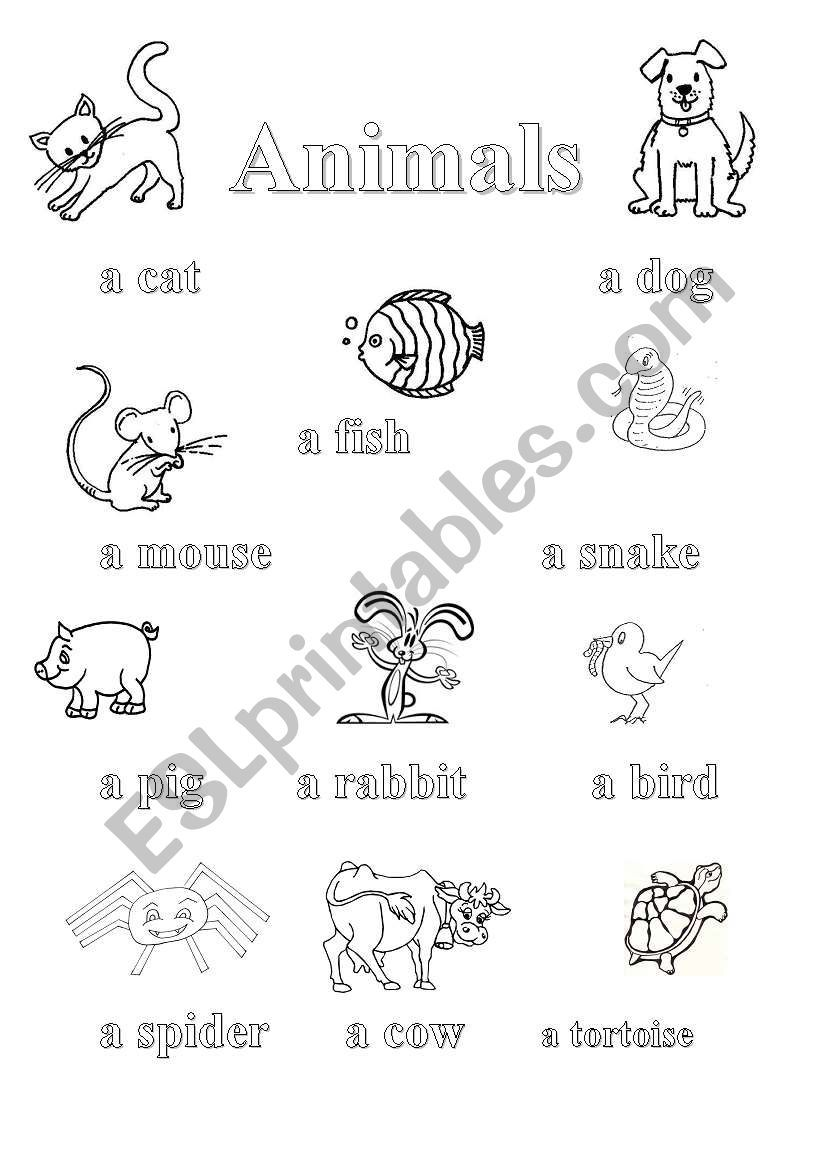Children learn how to pronounce animals. First page serves