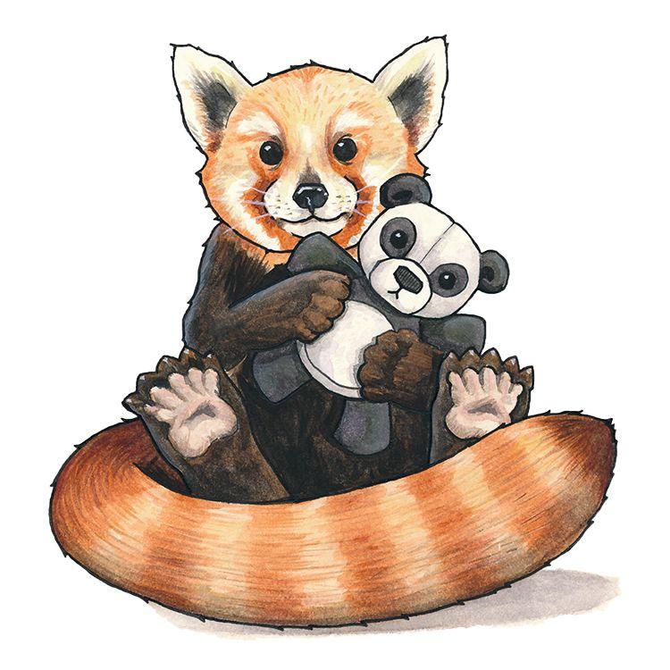Panda Red Panda Illustration Giant Panda Stuffed Animal Cute