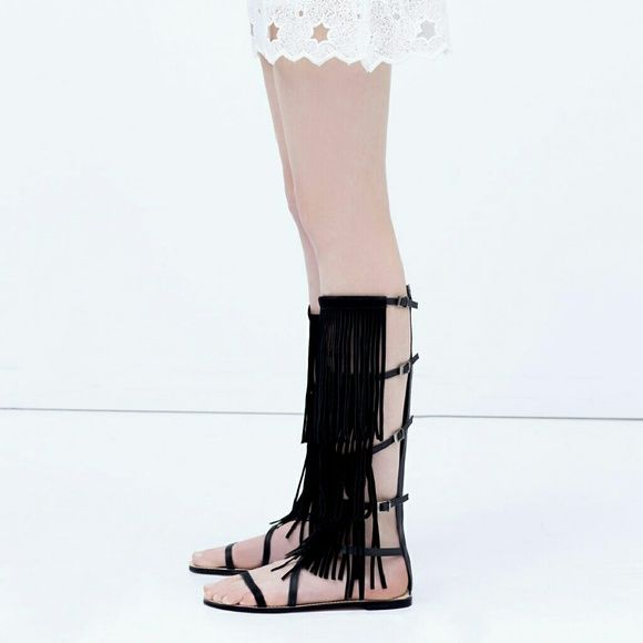 e7fc22694198 Zara fringe gladiator sandal (firm) Brand new. Super cute. Great with  shorts. A shirt dress etc. Suede. Last pic for style purposes. Zara Shoes