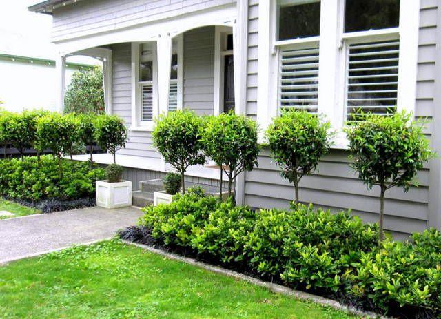 Garden Designer Auckland Gallery Seed Landscapes