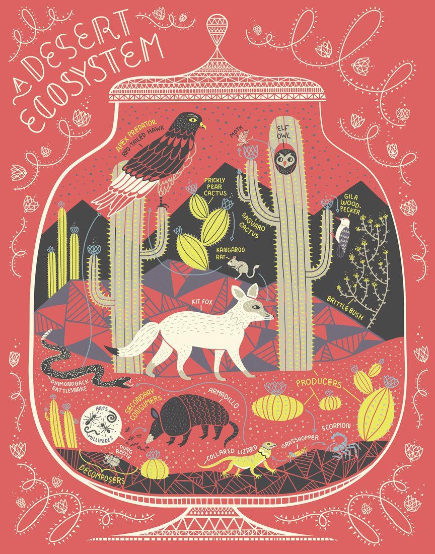 A Desert Ecosystem Terrarium Art Print Art prints