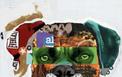 Collage Bambini ~ Lavoretti per bambini i collage cane collage arte scuola